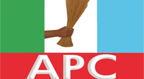 OPINION: AS THE APC CHICKEN COMES HOME TO ROOST
