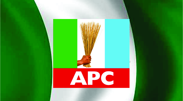 OPINION: APC, START GOVERNING, NOT WHINING