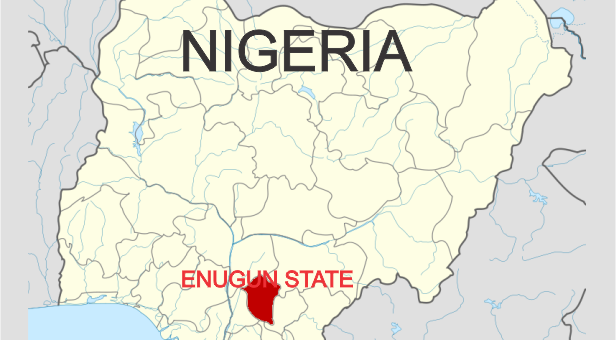 PDP: NWC Nullifies Appointment Of State Chairmen For Enugu, Delta