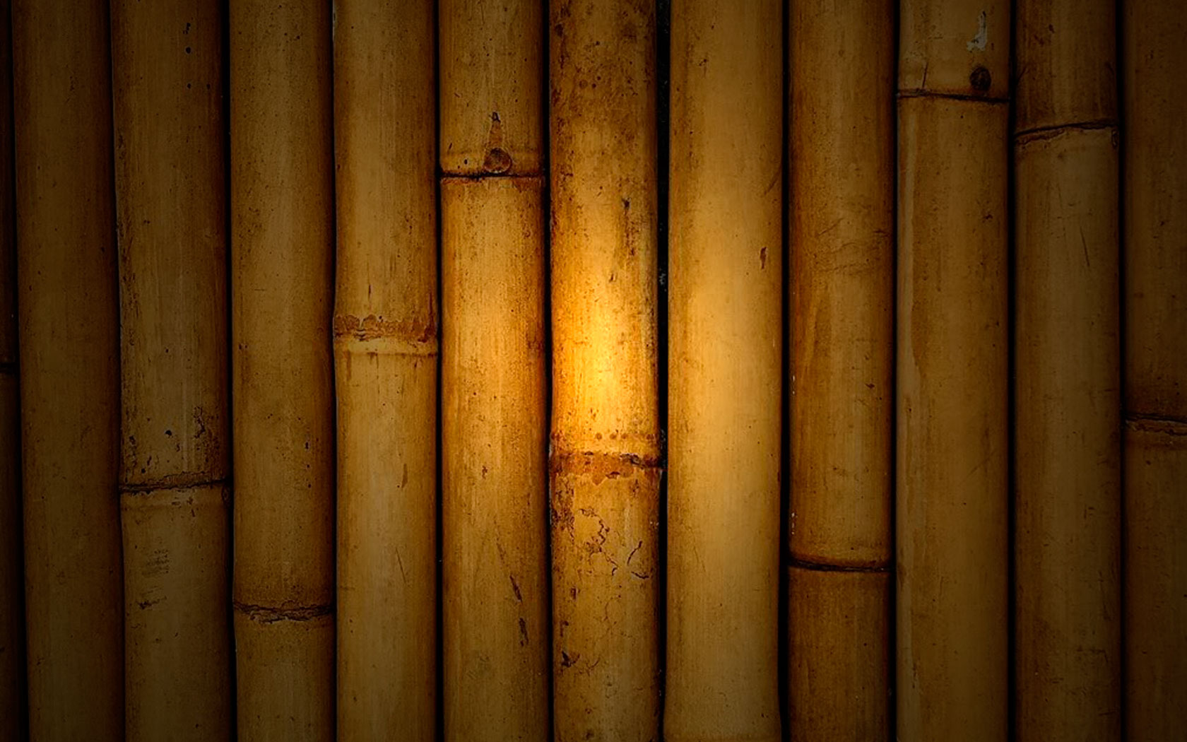 Opinion Bamboo Africa S Untapped Potential Thewill