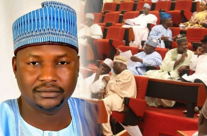 Image result for Malami and Senate