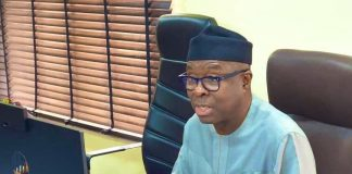 Minister of Industry, Trade and Investment, Adeniyi Adebayo