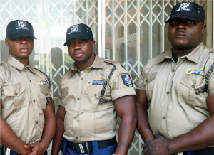 Private Security Service: Professionals who venture into this sector will help to boost capacity.