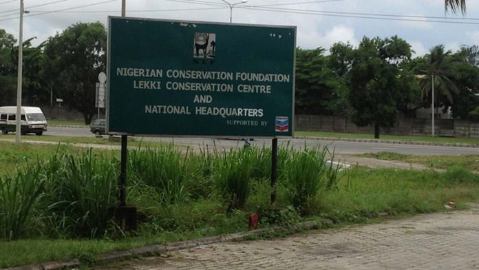 The Nigerian Conservation Foundation (NCF)
