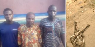 Police Arrest 3 For Exhuming Corpse For Money Ritual In Ogun